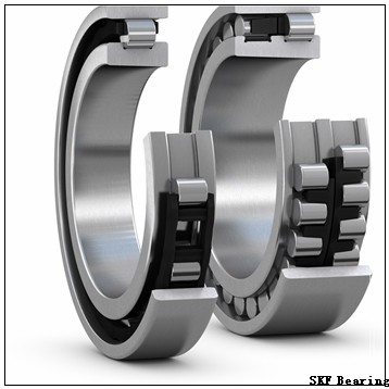 6 mm x 14 mm x 6 mm  6 mm x 14 mm x 6 mm  SKF GE 6 C plain bearings