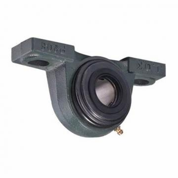 NSK NTN Pillow Block Bearing P210 Used for Agricultural Machinery